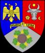 Logo Consiliul Judetean